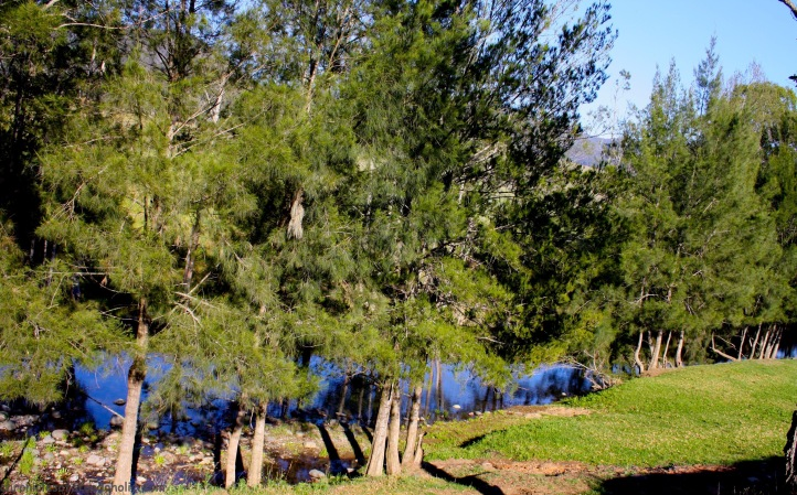 River flowed right next to the campgrounds at Camp Cobark