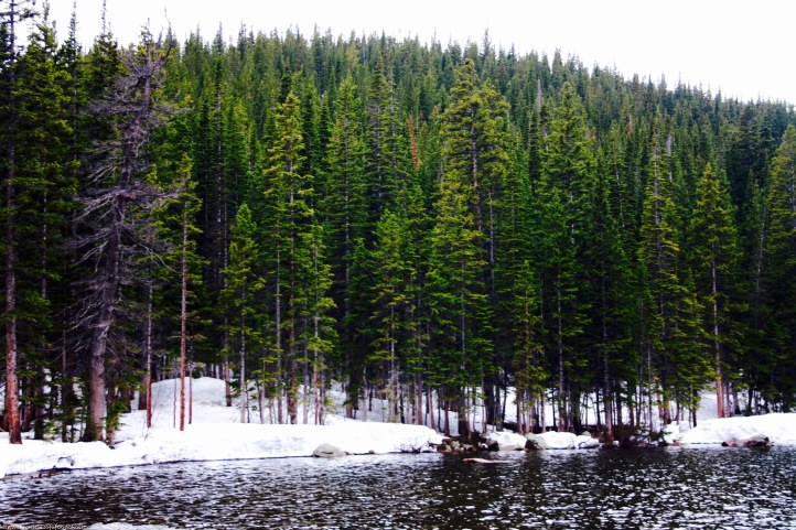 Alpine forests and glacial lakes